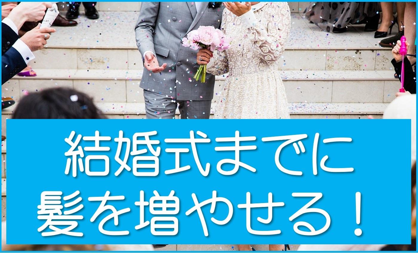 結婚式までに髪を増やせる