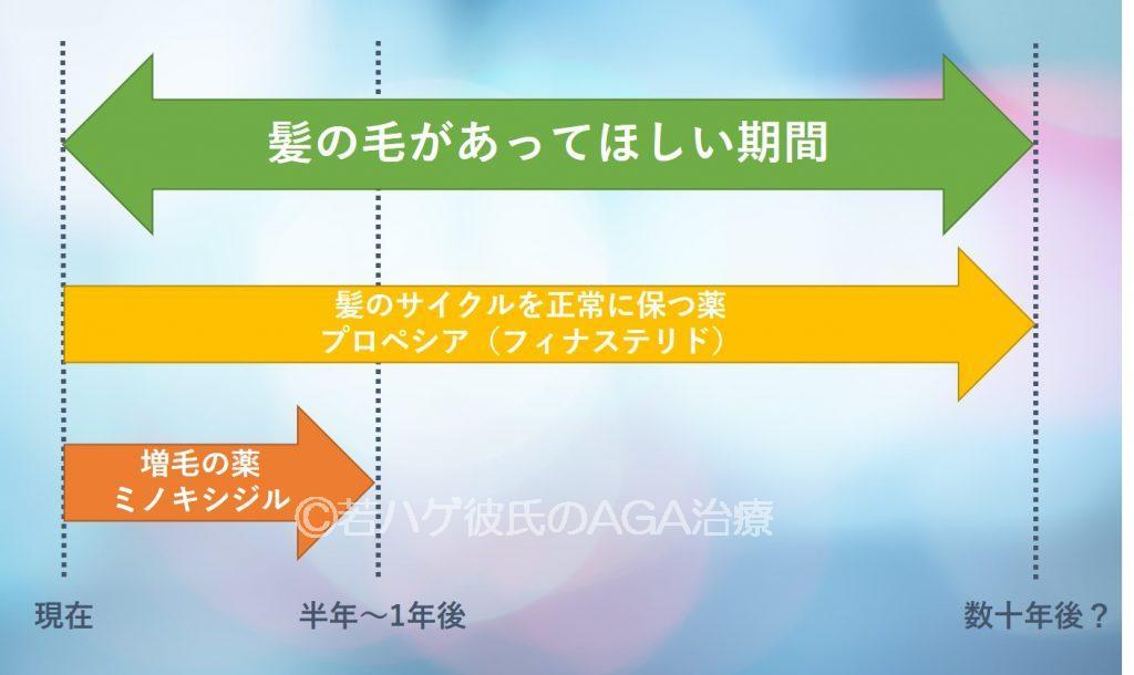 AGA治療薬を飲む期間の説明
