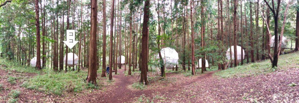 バチェラー3球体テントの位置